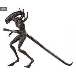 Au Choix Figurines MicroPopz