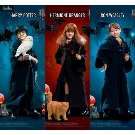 hermione granger a ron weasley datingsenior datování v san antonio texas