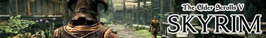 Figurines The Elder Scrolls et produits dérivés