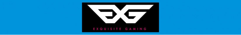 Figures and merchandising products Exquisite Gaming
