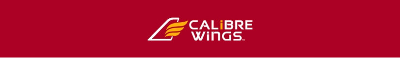 Figurines Caliber Wings