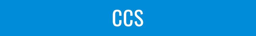 Figures CCS Toys